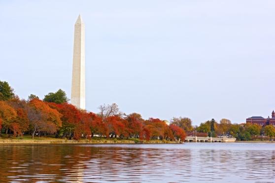 Washington DC. Foto por iStock / amedved