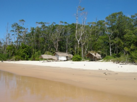 ilha-brasil-ilha-de-marajo-pa