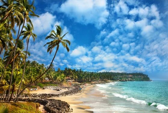 Beautiful view of Odayam beach near ocean and palm trees in Varkala, Kerala, India