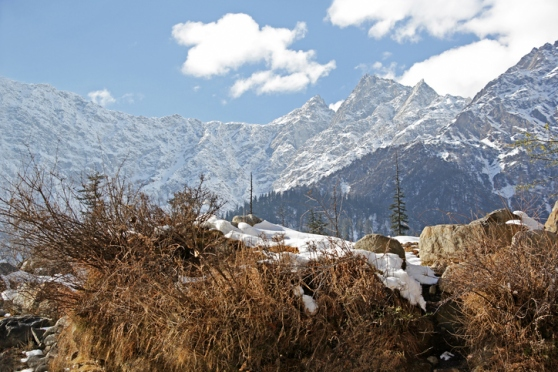 Himalayan Winter Landscape