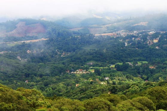 monte-verde