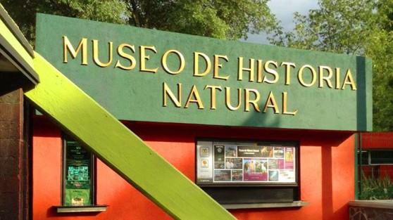 museu-de-historia-natural-e-cultura-ambiental